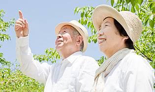 Эффективность японской косметики и биодобавок